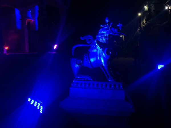 metallic singha bhaktapur